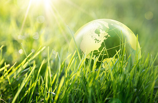 A glass globe lies on the grass in the sunlight.