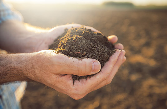 A farmer holds earth from the field in his hands.